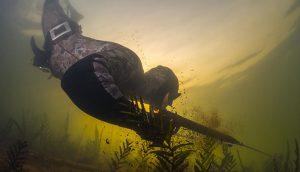 Las Mejores Máscaras De Pesca Submarina